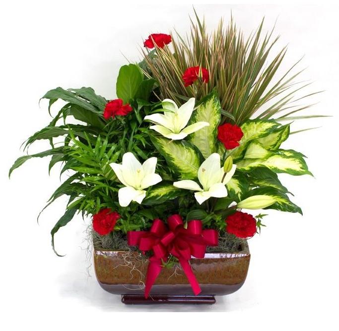 Centros de flores a domicilio